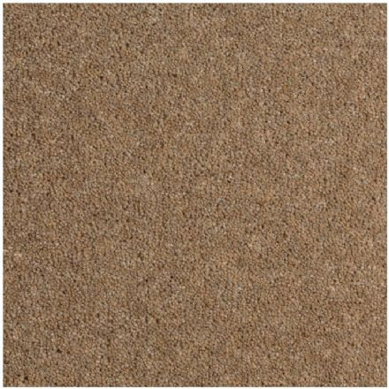 Durham Twist Carpet - Antelope ( M2 Price ) email us with your sizes (Free Sample Service)